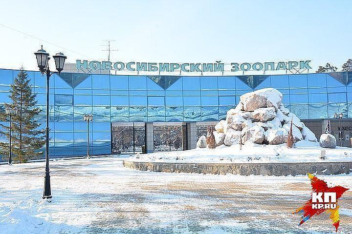 ВОрловской области пройдёт международная экологическая акция «Час Земли»