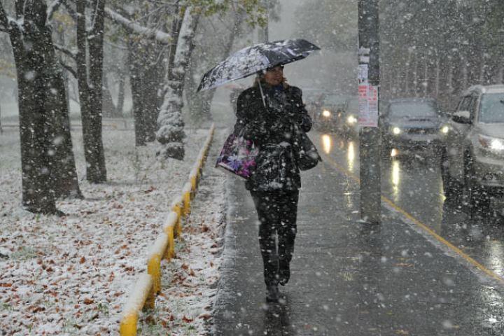 Дорожники исадовники Петербурга переходят наусиленный режим работы из-за шторма