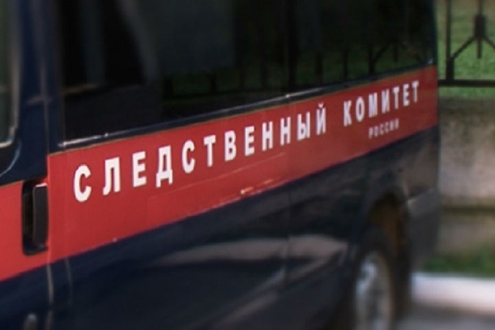 Автоледи вКингисеппе укусила полицейского