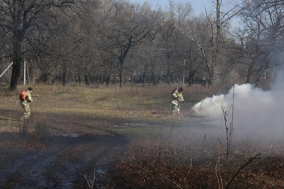 Пожароопасный сезон объявлен вВолгоградской области
