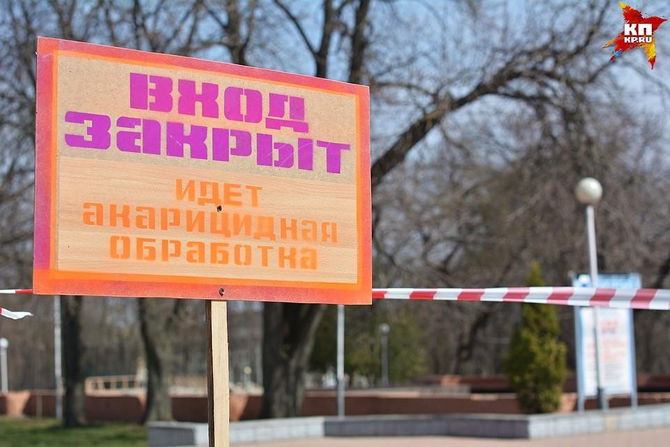 ВЧелябинской области клещи укусили 3-х человек