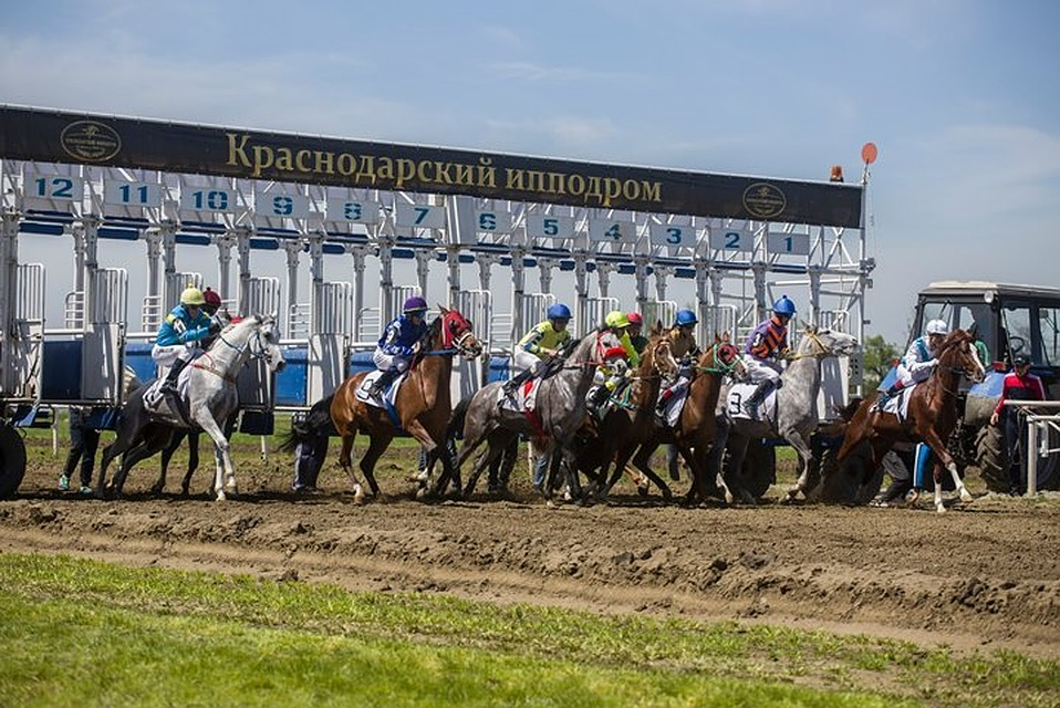 НаКраснодарском ипподроме стартовал скаковой сезон