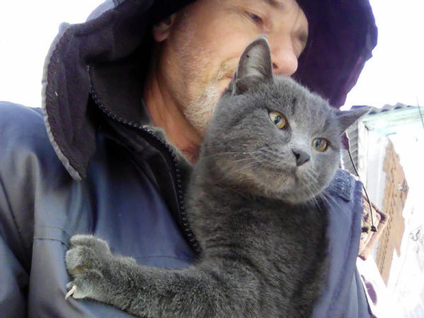Связисты сняли испуганного кота сэлектрического столба