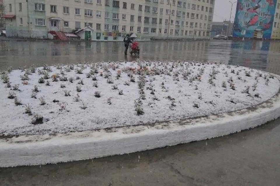 Июнь 2017: НаМурманскую область обвалился снежный циклон