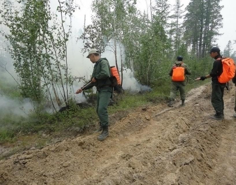 Количество лесных пожаров вДФО достигло 117, ихплощадь завыходные утроилась
