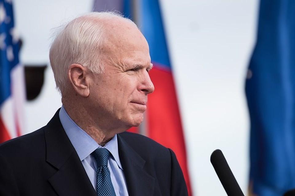 Профессор Университета Сан-Диего назвал сенатора Маккейна военным злоумышленником