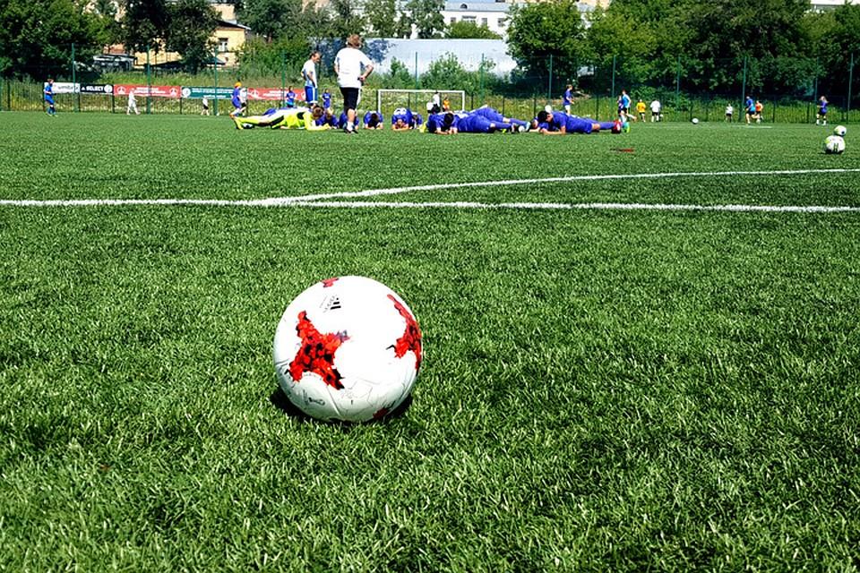 В 2017 в столице России будет сооружено 5 футбольных полей— Собянин