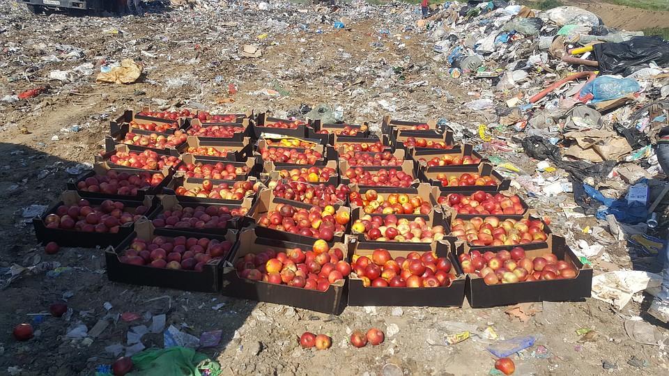ВКрасноярске опасные фрукты раздавили бульдозером