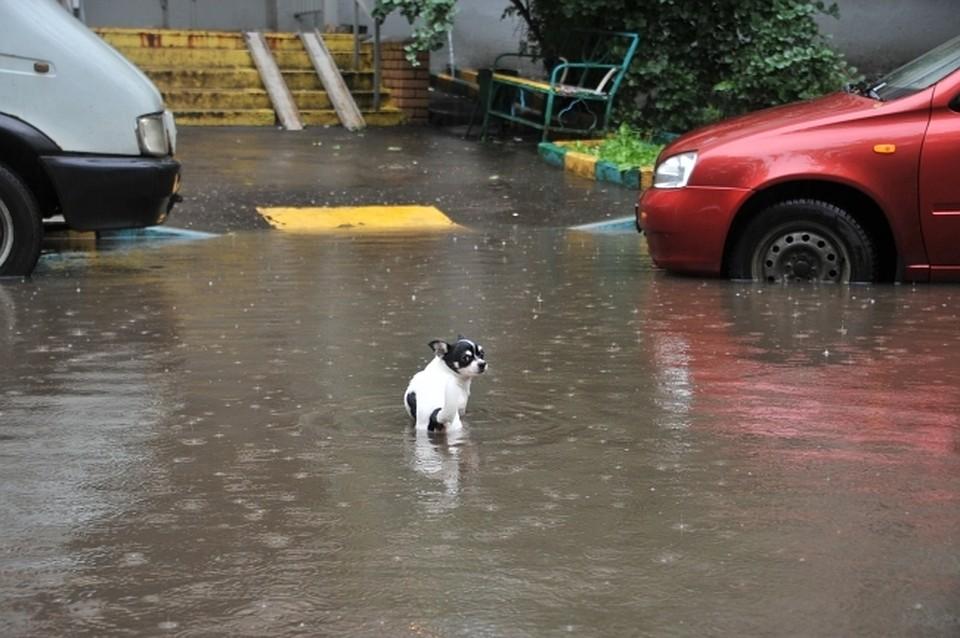 Дождь, гроза иград: наОдесскую область надвигается шторм