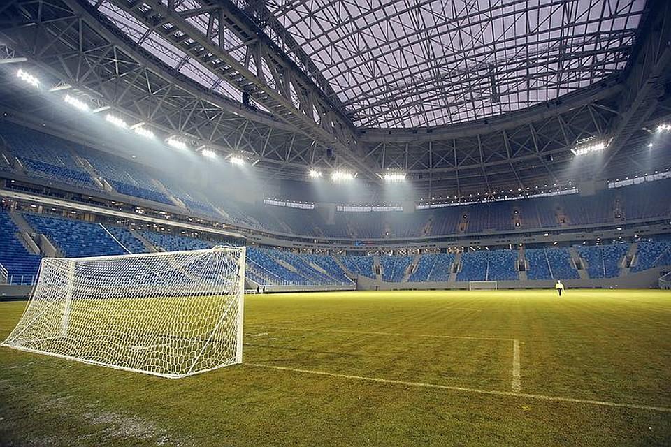 Баклан будет символом стадиона «Санкт-Петербург Арена»