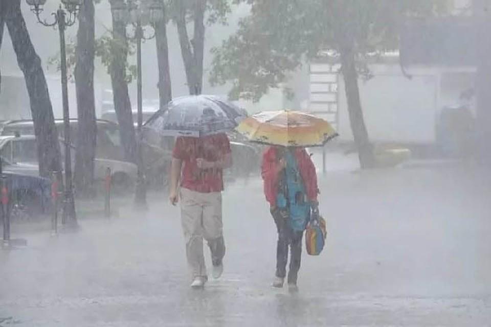 Тайфун «Талим» затронет несколько районов Хабаровского края