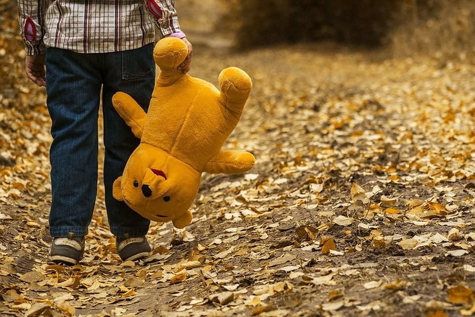 ВПсковской области мужчина надругался над 10-летним парнем