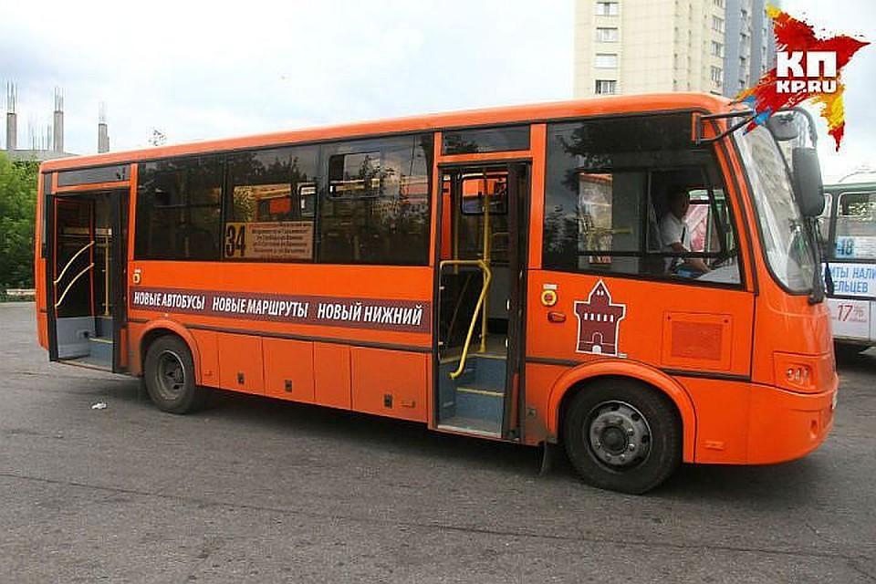 Дмитрий Каргин вернул себе маршрут №71
