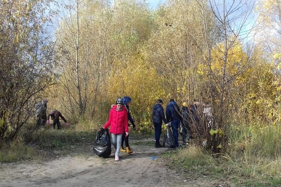 5 тыс. хвойных деревьев высадили натерритории Русско-немецкой Швейцарии вКазани