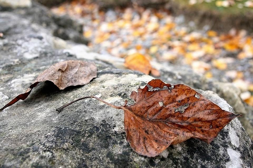 Переменчивая погода будет наблюдаться вПриморье и кконцу осени