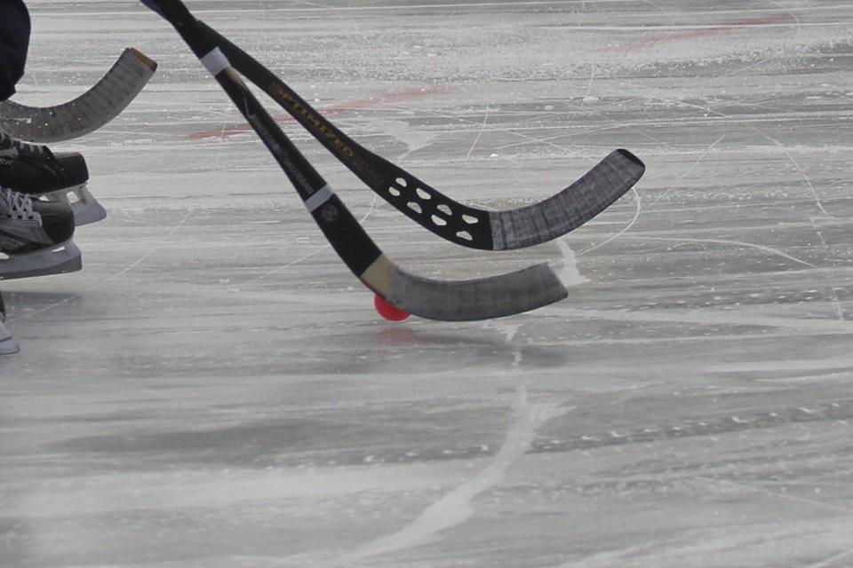 Хоккеистки «Рекорда» уступили вфинале шведкам