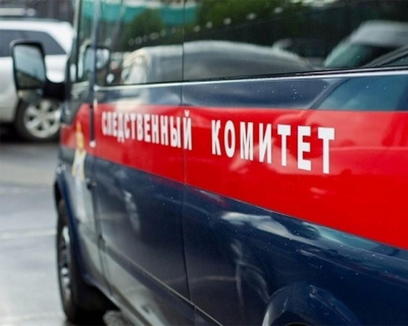 Кубийству вдетском парке Новомосковска могут быть причастны двое строителей