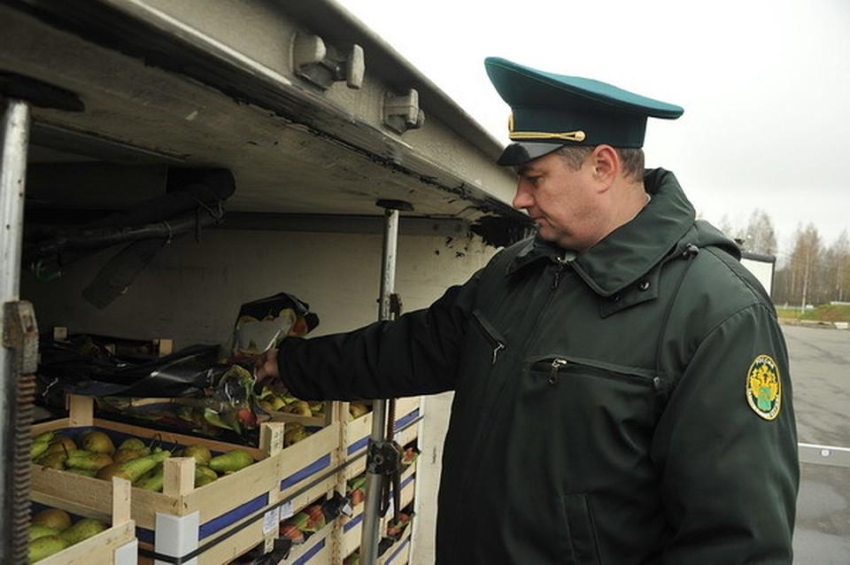 Смоленские пограничники задержали сразу 16 фур ссанкционкой