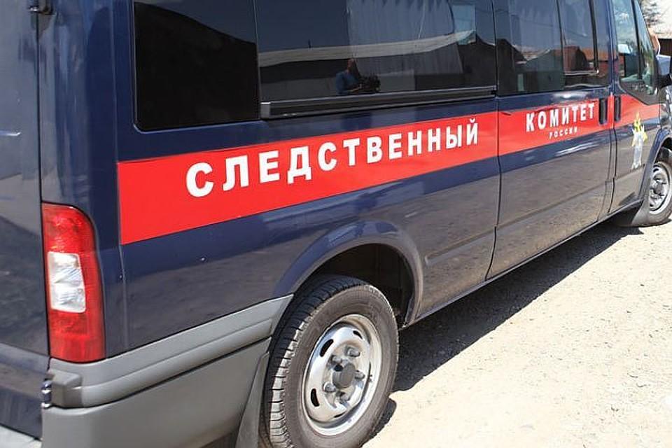 Ребенок получил травму лица вдетской клинике Новосибирска
