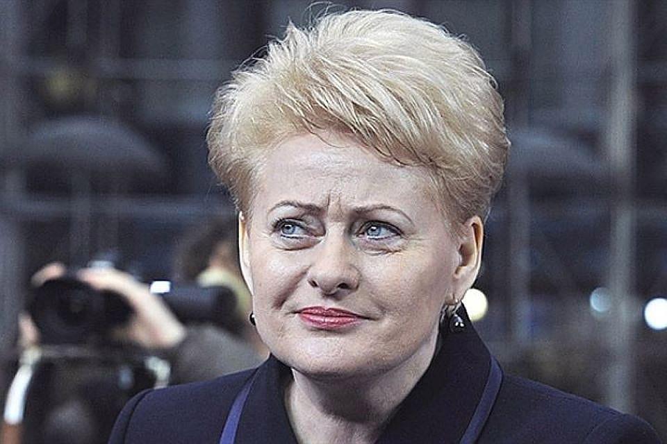 Президент Литвы: неучастие А. Лукашенко всаммите Восточного партнерства— решение столицы