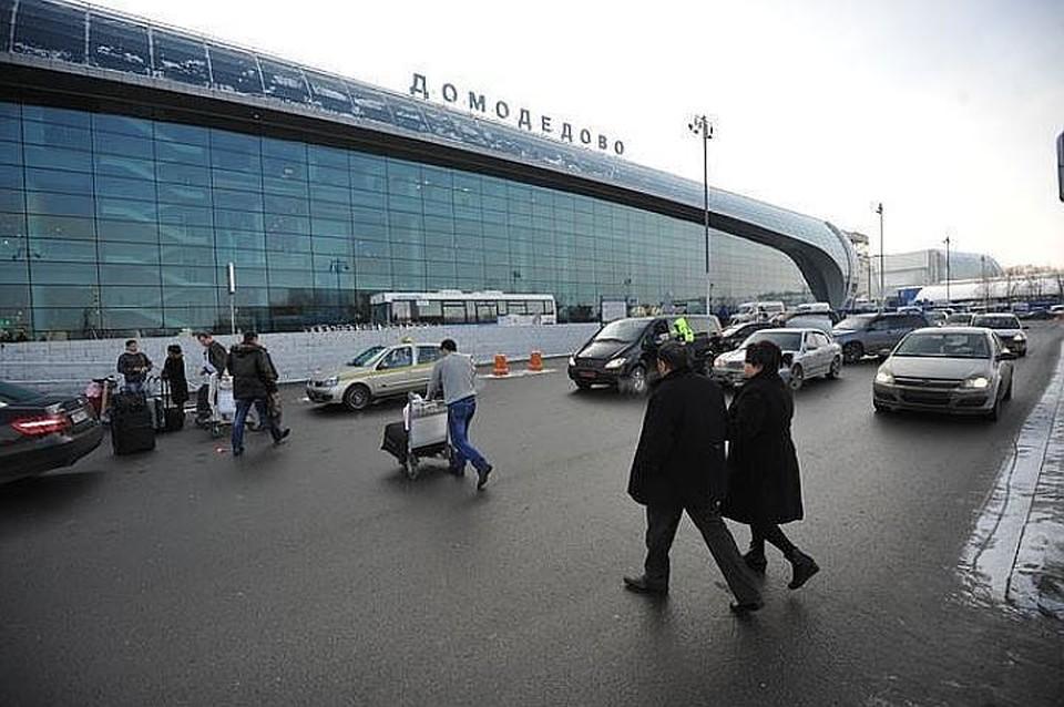 Ваэропорту Домодедово задержали мужчину, заявившего оналичии унего бомбы