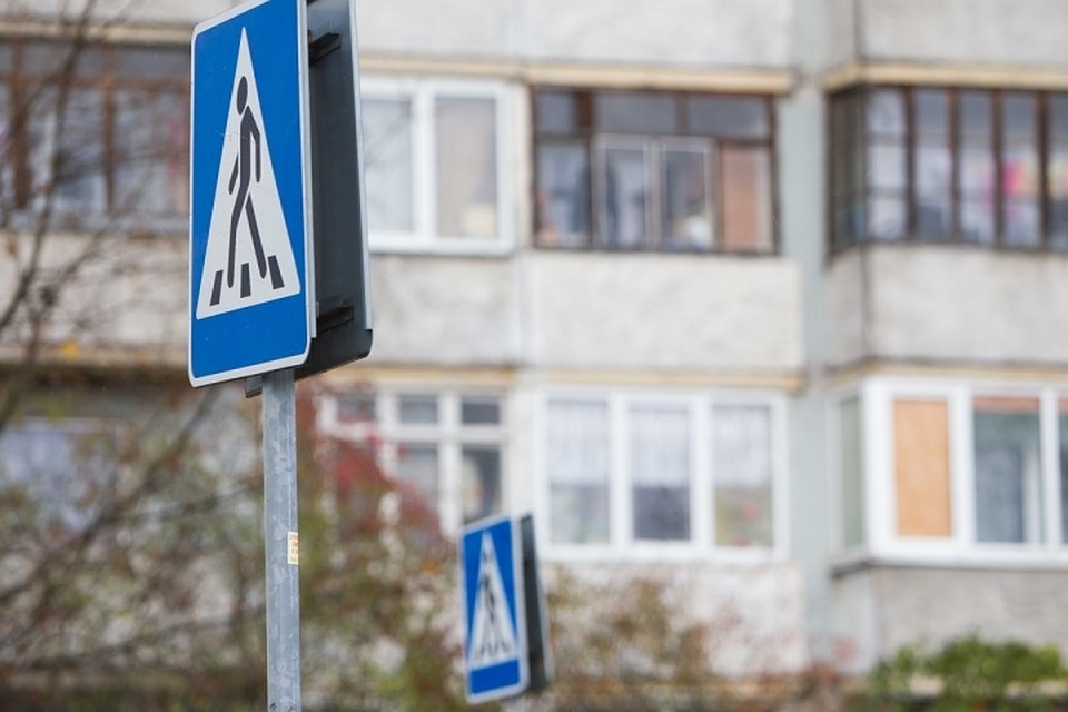 ВКалининграде словили водителя, сбившего ребенка на«зебре»