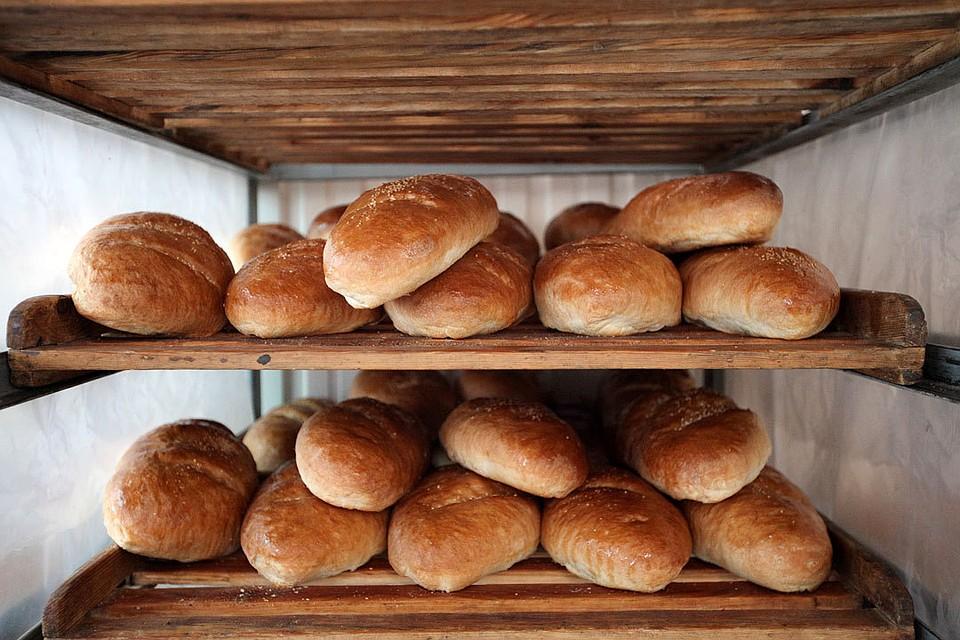 Качество хлеба вСКФО инаСтаврополье выше, чем вдругих округах