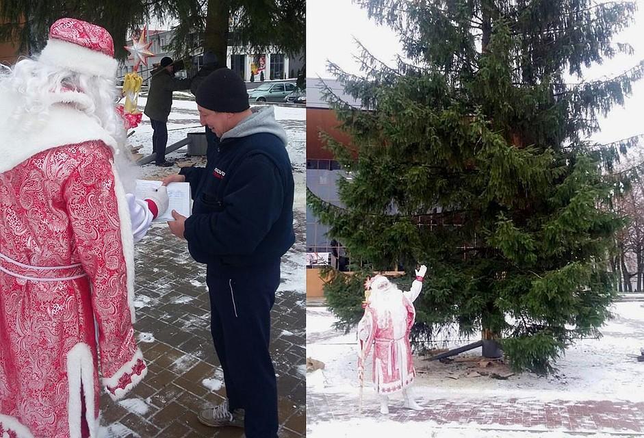 ВСоветске установили главную елку города, спилив ееудетского сада