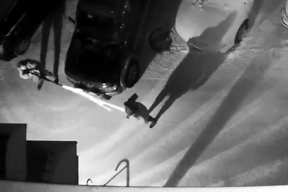 Новосибирец, застреливший изревности возлюбленную, получил 11 лет колонии