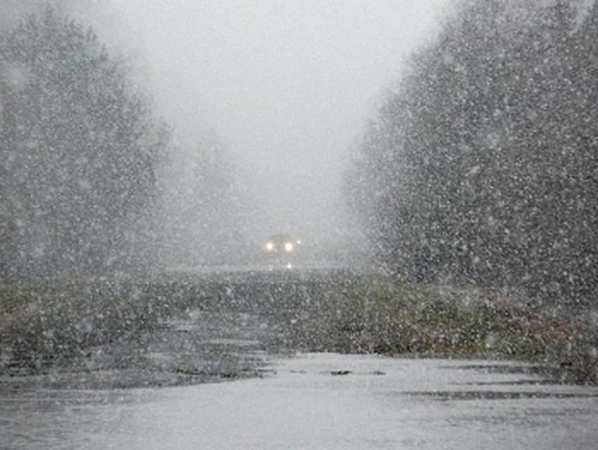 ВКрасном Сулине объявили штормовое предупреждение