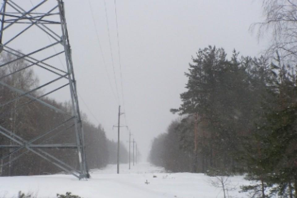 Вовсе населенные пункты Хабаровского края, доэтого обесточенные снегопадом, возвратилось электричество— МЧС