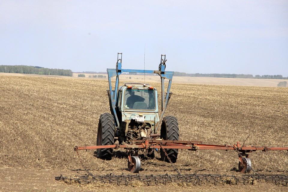 Практически 2 млрд руб. истратят навесенне-полевые работы вНовосибирской области