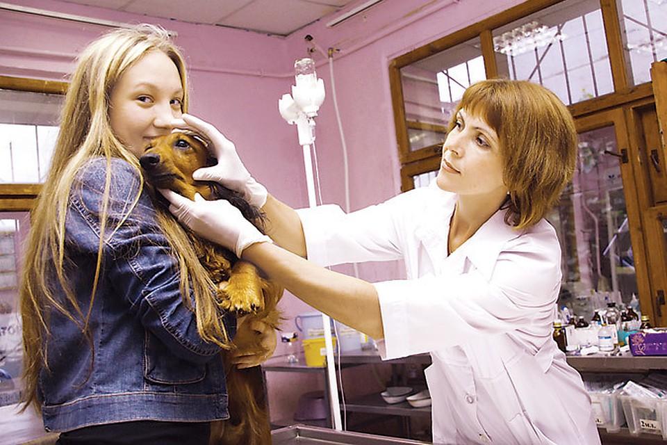 82 поликлиника на ялтинской расписание врачей