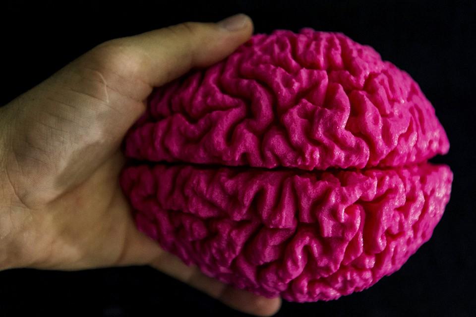 Сейчас последней границей, из-за которой не возвращаются, считается смерть мозга