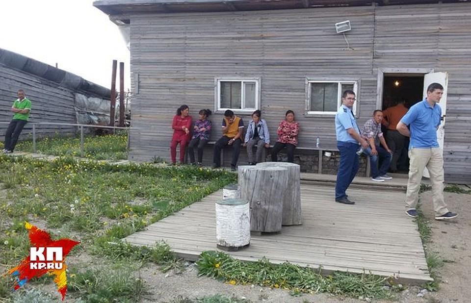 ВСвердловской области нелегалы изКитая выращивают опасные помидоры иогурцы