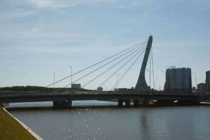 Мост находится на окраине города на Неве