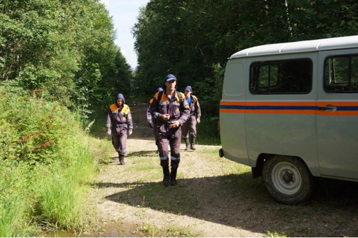 ВХабаровском крае заблудились 10 грибников, ихвывели излеса cотрудники экстренных служб