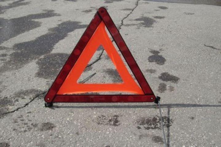 ВТатарстане автомобиль врезался вдерево, погибла женщина