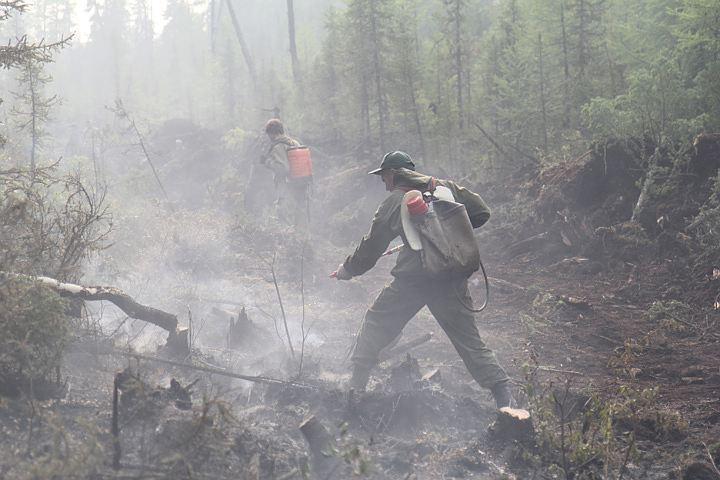ВИркутской области увеличивают группировку потушению лесных пожаров