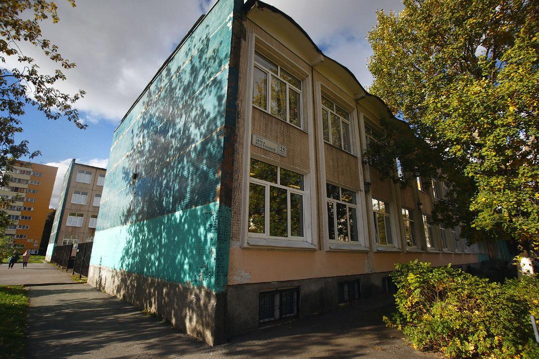 Происшествие произошло в лицее №387 Кировского района.