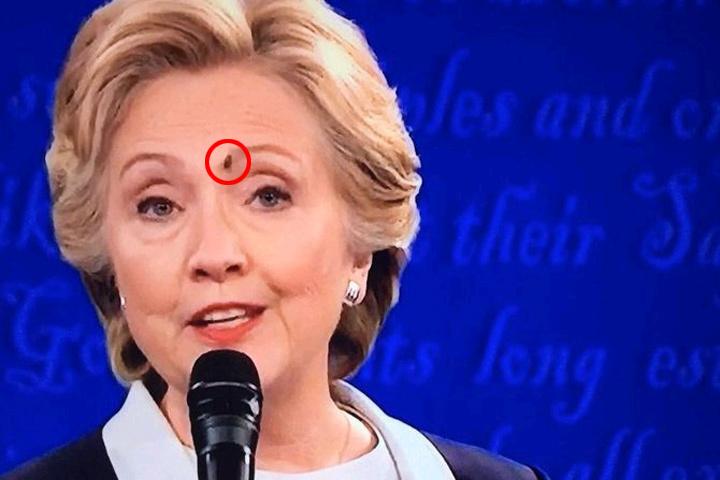 В разгар теледебатов залетевшая в студию муха сделала свой выбор.