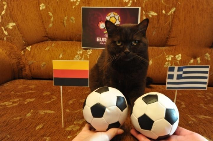Три семейные пары подрались вТомске из-за футбольного матча