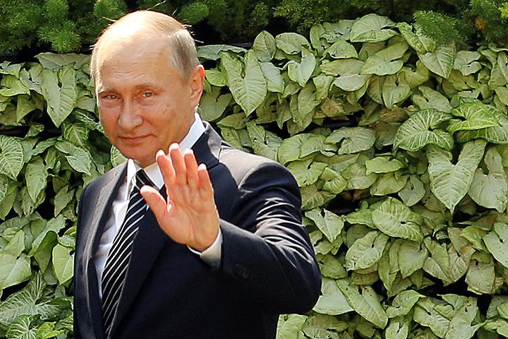 Владимир Путин на саммите БРИКС.