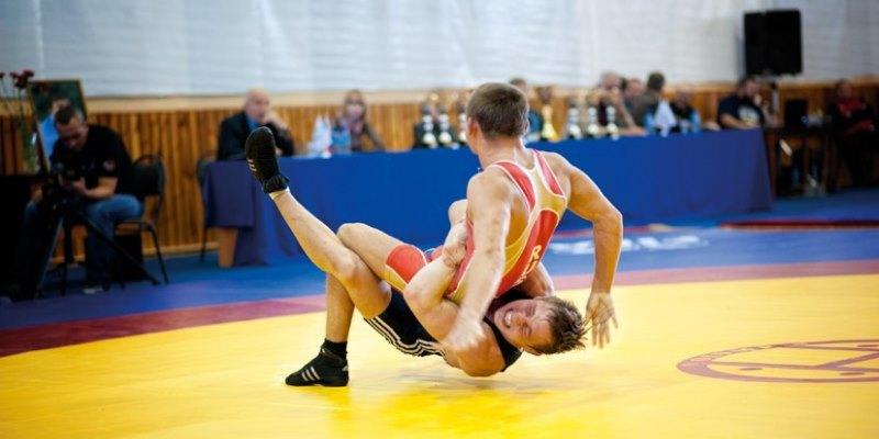 Сборная Тульской области погреко-римской борьбе выиграла медали насоревнованиях вТамбове