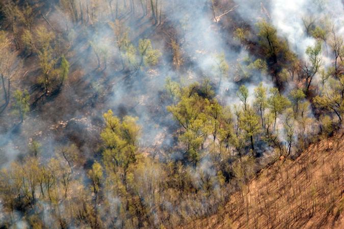 НаЯмале решают вопрос снехваткой десантных пожарных
