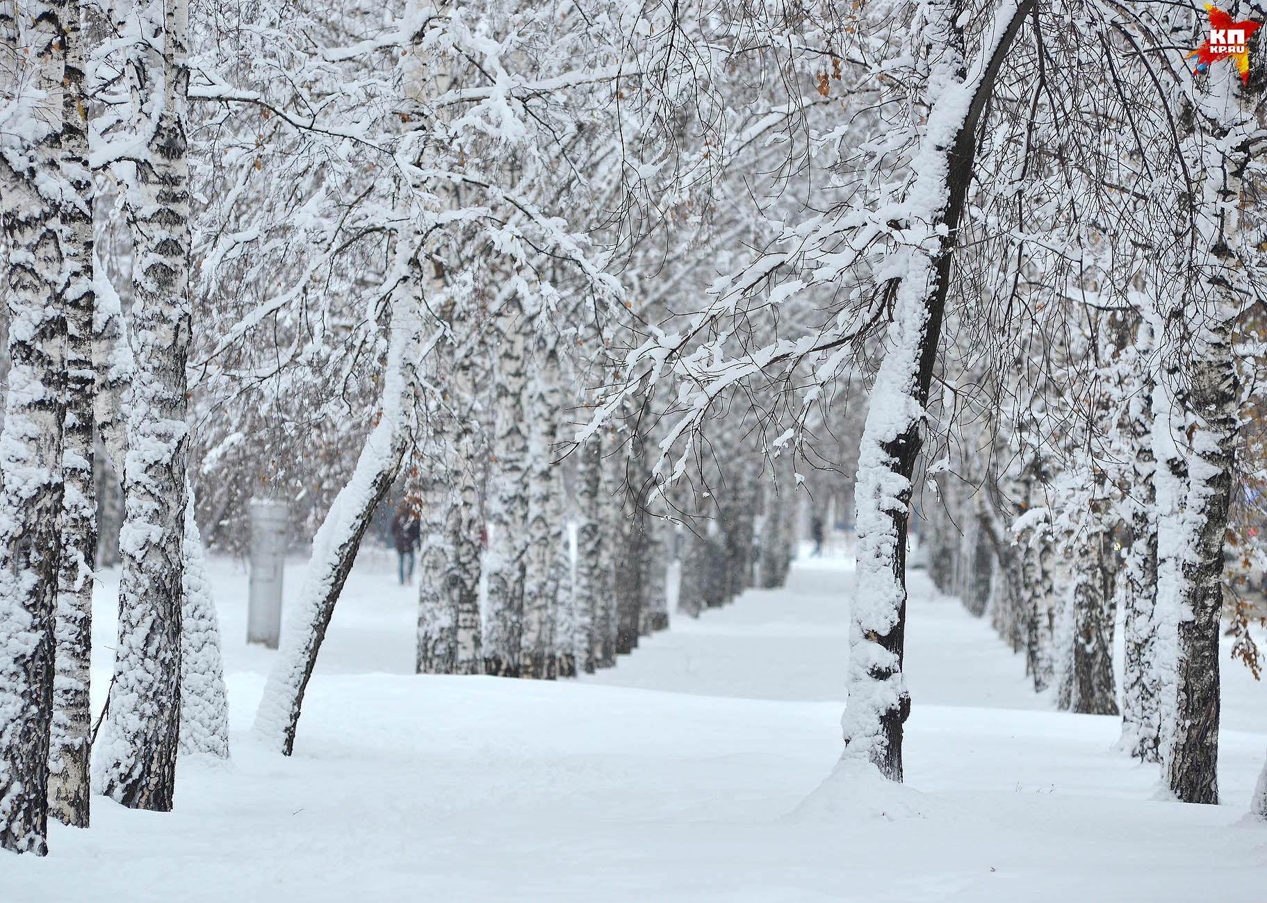 В Кузбассе холодный ноябрь сменился теплым декабрем