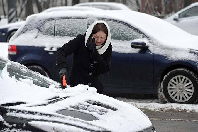 Снег выпал точно в начале декабря, как на заказ.