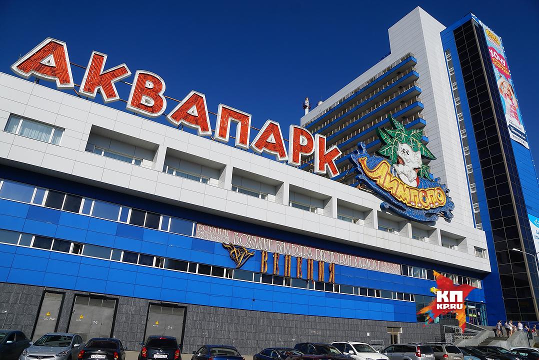 Экс-владельцу «Лимпопо» дали 4 года замошенничество ипреднамеренное банкротство