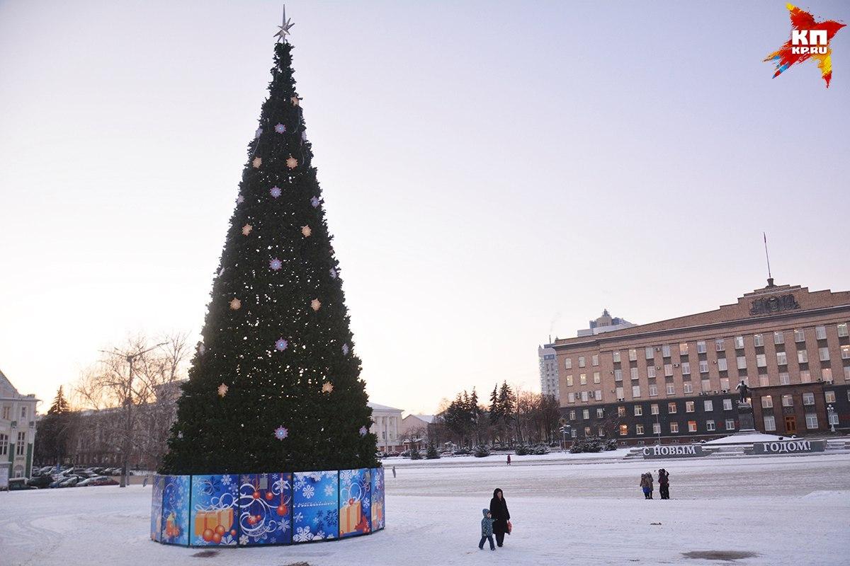 КНовому году вОрле установят 117 елок
