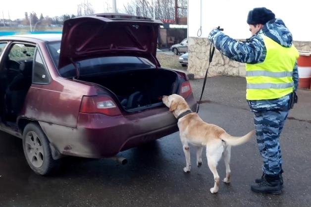 Краснодарский полицейский пес отыскал партию наркотика вмашине изДагестана